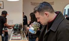 What are the differences between indica vs sativa cannabis strains? Knowing this is the foundation of being a savvy weed consumer. Iced Tea Brands, Growing Weed Indoors, Constellation Brands, Iced Tea Maker, Viral Marketing, Like A Pro, Cool Things To Make, Vape