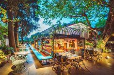 ΕΞΟΔΟΣ   Πού να πιείτε καφέ μέσα στη φύση στην Αθήνα