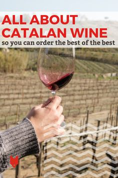 Even the most rustic tapas bars in Barcelona will have a decent selection of Catalan wines. Not sure how to narrow it down? This guide breaks down some of our favorites, as well as tips for how to order them like a local. Spanish Cuisine, Spanish Food, Tapas Bar, Barcelona Travel, Like A Local, Foodie Travel, Need To Know, Night Life, Wines