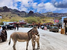 Oatman, Arizona Tuesday Tidbits – Two Trails One Road Road Trip Usa, Life Is An Adventure, Gas Station, Taking Pictures, Back In The Day, Cemetery, Hanging Out, Arizona, Trail