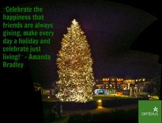 Merry Christmas from Ambius! Holiday Quote, Christmas Quotes, Holiday Fun, Christmas Cards, Merry Christmas, Christmas Things, Christmas Trees, Holiday Decor, Motivational Photos