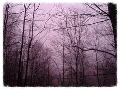 Pink fog...