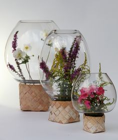 Ft Group clear with flowers.jpg