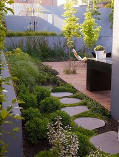 Ben Scott Garden Design / Highfield Rd