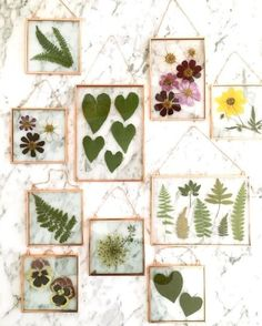 Stunning Pressed Flower Art by Karly Murphy Virginia-based artist Karly Murphy prides herself in creating everything by hand with the use of real pressed flowers and plants.I used to dry out and place all the flower petals I've received over the years int Diy Fleur, Pressed Leaves, Framed Leaves, Pressed Glass, Fleurs Diy, Deco Nature, Hanging Flower Wall, Pressed Flower Art, Deco Floral