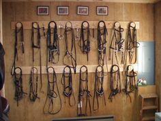 I really like these bridle racks. Nice saddle rack too. Dream Stables, Dream Barn, Horse Stalls, Horse Barns, Tack Room Organization, Horse Tack Rooms, Horse Barn Designs, Horse Shelter, Horse Barn Plans