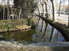 Parque de la Dehesa de Gerona  Bien de Interés Cultural  Patrimonio histórico de España