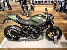 Ducati Monster Deisel