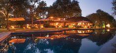 Safari Lodge, Kings Camp