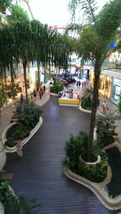 5th Avenue Shopping, Playa Del Carmen Mexico