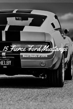 15 fierce ford mustangs of 2016 Ford Mustang For Sale, Used Ford, Ford Mustangs, Cars, Autos, Automobile, Car, Trucks
