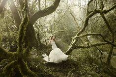 Forest fantasy. #PintoWin #NapoleonPerdis #Cinderella.