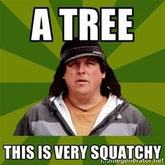 a tree  this is very squatchy | Bobo from Finding Bigfoot