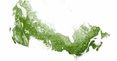 This is what Canada looks like when mapped with just its forests   and trees