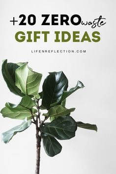 Zero Waste Gift Giving Ideas including eco friendly gifts for her, him, and everyone on your list - no matter the occasion! Love Natural, Natural Living, Simple Living, Sustainable Gifts, Sustainable Living, Green Christmas, Christmas Ideas, Natural Cleaners, Green Gifts