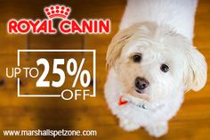 OMG! Upto 25%Off: Royal Canin Pet Food:Grab Free Beaphar Products On Every Order:T&C Apply*Feed Your Pet With Healthy And Nutritious Food Specially Designed For Them. Pet Food Needs To Be A Blend Of Essential Nutrients, Vitamins, Flavors Etc.  We Are Here Presenting The Best Cat Food Brands That You Will Be Getting At Great Discounts Like Never Before.  Here we bring you Royal Canin food for your pet (cat and dog) at fabulous discounts.