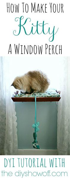 This DIY cat perch has instructions that layout how to make a great window perch for your kitty. Cats love having a space to relax and watch the outdoors! Cat Window Perch, Cat Perch, Window Bed, Window Sill, Animal Projects, Diy Projects, Diy Shows, Snowshoe, Cat Room