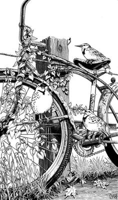 Inspiration piece shows bicycle leaning against fence post with bird sitting on seat.  Craig McCudden