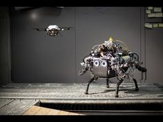 When crawling robots and flying drones team up, there is no escape - http://www.baindaily.com/when-crawling-robots-and-flying-drones-team-up-there-is-no-escape/