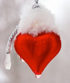 There will always be that one person who with love, will thaw a Frozen heart, and if you ever experience this, consider yourself doubly blessed. ~ by beautfl stranger