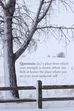 Querencia (n) a place from which ones strength is drawn, where one feels home; the place where You are your most authentic self Unusual Words, Rare Words, Unique Words, New Words, Powerful Words, Cool Words, Pretty Words, Beautiful Words, Beautiful Definitions