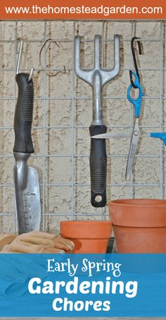 Early Spring Gardening Chores
