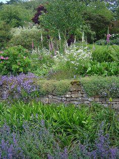Garden and rock wall