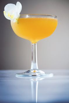 Sonata No. 23 Cocktail, Ingredients: 3 oz aged rum - 1 oz Gran Classico Bitter - 2 oz lime juice - 1 1/2 oz passion fruit syrup - 1/2 oz rich simple syrup.