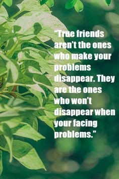 Stay happy, stay friendly, stay updated through friendship quotes for touch your old and new friends, friendship quotes in hindi, short friendship quotes Friendship Messages, Friendship Quotes In Hindi, Hindi Quotes, True Friends, New Friends, Stay Happy, Touching You, Old And New, Real Friends