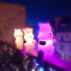 Lion mignon, lumignon sur le balcon !