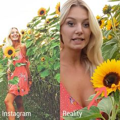 Be wild like a sunflower they said🌻, but no one told me that the risk of being attacked by bees would be that high then😂🐝 . V Instagram, Tell Me, Fun Facts, Strapless Dress, Funny Pictures, Sayings, Bees, Mindset, Pretty