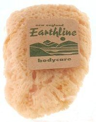 """New England Earthline Seasilk Cosmetic Sponge 4"""" by New England. $4.18. Removes Dead Skin Leaving Skin Vibrant And Healthy Looking.. Their soft texture promotes better and less abrasive cleaning.. Cleansing sponge that exfoliates dead skin cells and improves blood circulation throughout body. Sea Sponges are absorbent, durable, long lasting, will not stain or retain odors. Nicole Reed Loofahs are a natural vegetable cleansing sponge that exfoliates dead skin cells and impro..."""