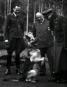 Adolf Hitler's dog Blondi doing a trick for her master, sitting on her hind legs
