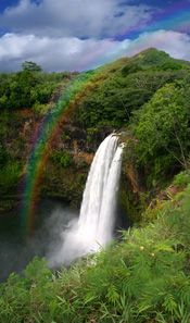 Maui rainbow - The only thing keeping my sanity during the wedding planning....the rainbows at the end of it all!