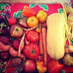 #farmersmarketnyc - Tompkins Square Greenmarket via mhtngreenmarkets on Instagram