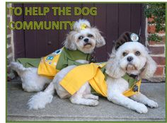 LINE 3 OF THE PUP SCOUT PLEDGE JOIN PUP SCOUTS TODAY AT http://www.pupscoutsusa.com/