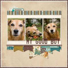 Great layout for scrapping your furry friend. My Good Boy - Club CK - The Online Community and Scrapbook Club from Creating Keepsakes Dog Scrapbook Layouts, Scrapbook Sketches, Scrapbook Paper Crafts, Scrapbook Cards, Scrapbook Photos, Scrapbook Templates, Creating Keepsakes, Digital Scrapbooking, Scrapbooking Ideas
