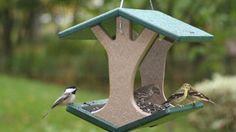 Простая кормушка для птиц