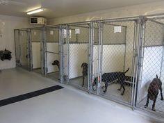 luxury dog kennel home dog kennel indoor laundry rooms luxury dog kennel pet hotel K9 Kennels, Cheap Dog Kennels, Luxury Dog Kennels, Dog Boarding Kennels, Puppy Kennel, Dog Kennel Cover, Pet Boarding, Dog Kennel Designs, Kennel Ideas