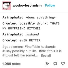A Funny, Funny Memes, Funny Art, Memes Humor, Funny Stuff, Best Love Movies, Good Omens Book, Somebody To Love, I Ship It