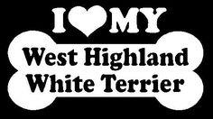 west highland white terrier cartoon - Google Search