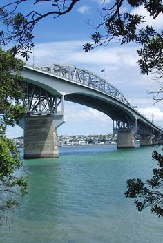 The Auckland Harbour Bridge (also known as the 'coathanger;). At 1,020 m (3,348 ft) long is the longest bridge in New Zealand's North Island. AJ Hackett first Bungy Jumped off the Harbour Bridge in 1987. Photo by CLRgraphics. #AJHacklet #bungy #Auckland #NewZealand #bridge