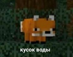 Memes Funny Faces, Stupid Memes, Life Pictures, Funny Pictures, Hello Memes, Happy Memes, Russian Memes, Funny Mems, Minecraft Memes