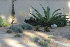 Linda Estrin Design :: Gardens + Succulent Floral