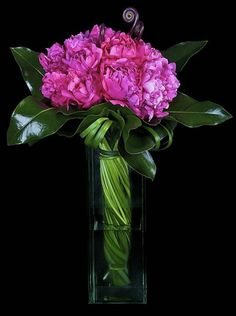 Fascinating pink and glossy green bouquet-love the twist of the stems inside the vase