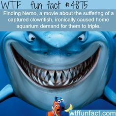 The irony of Finding Nemo - WTF fun facts