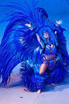 """Boi Caprichoso"" Festival folclórico de Parintins-Brasil"