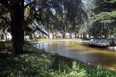 jardim-joao-chagas