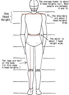 step by step worksheet how to draw the human body - Google Search