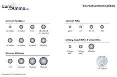 Diagram of Common Bullet Sizes